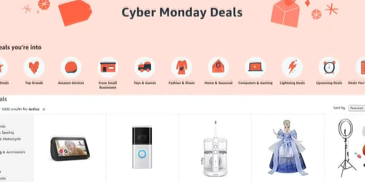 Cyber Monday Safety