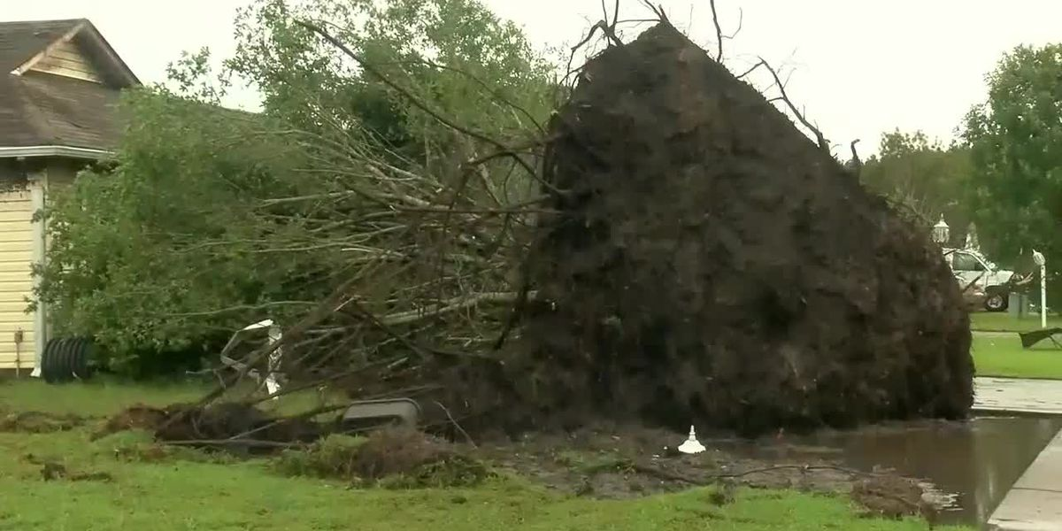 Horry Electric Cooperative provides statistics on damage done after Hurricane Dorian