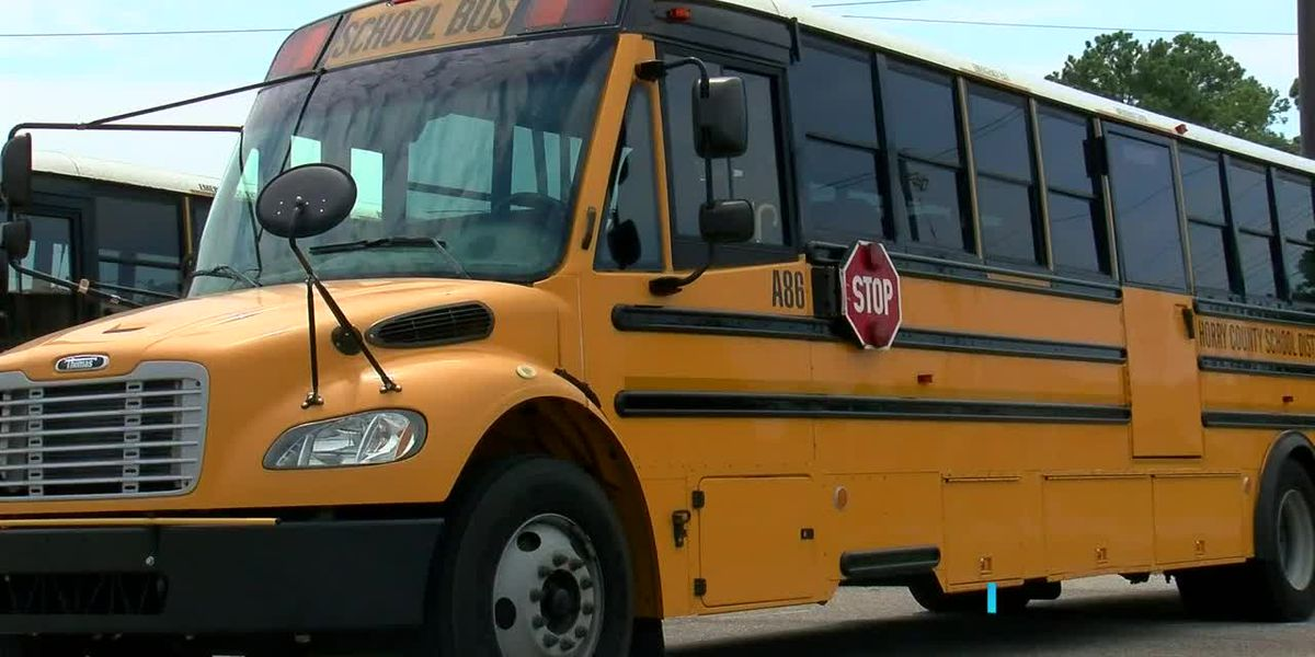 Horry County Schools expected to receive around 20 new buses for the school year