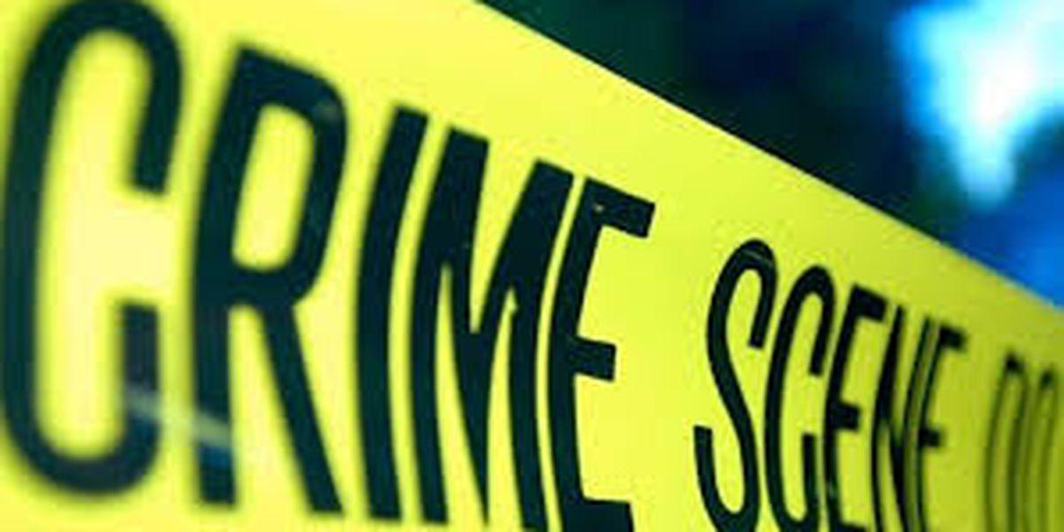 Georgetown deputies investigating death of homeless man