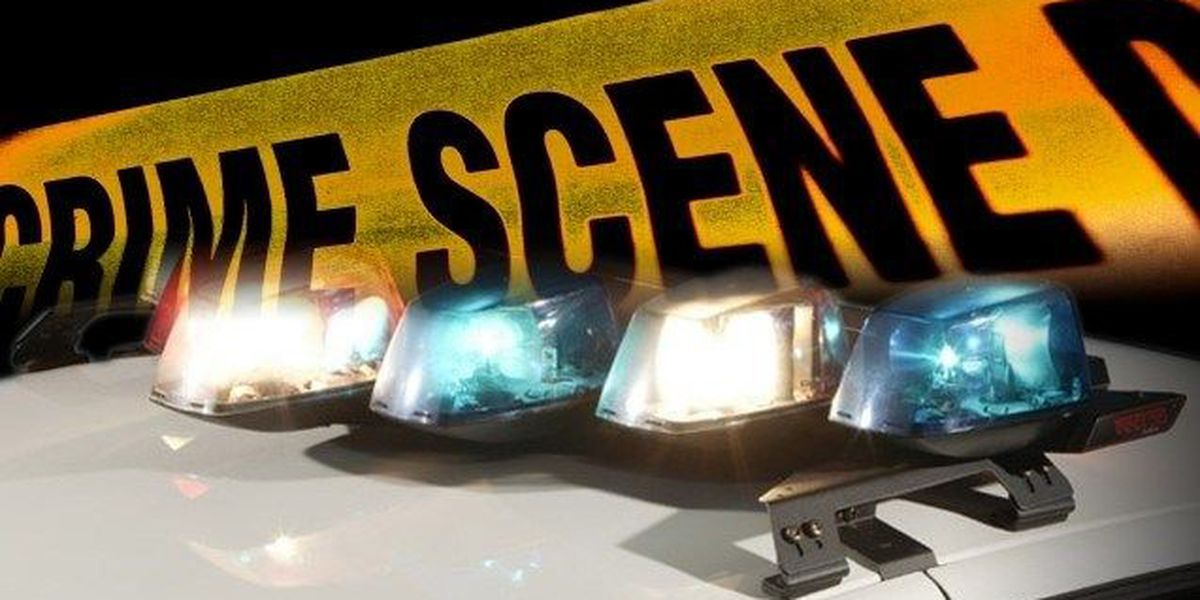 Lake City Police investigate shooting at local club